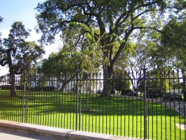 White House (1)