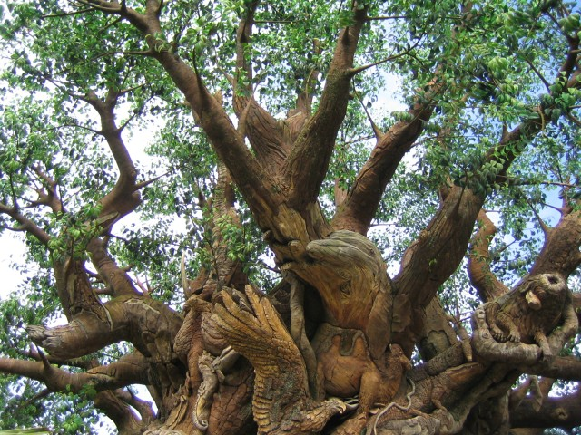 The Tree of Life in Animal Kingdom