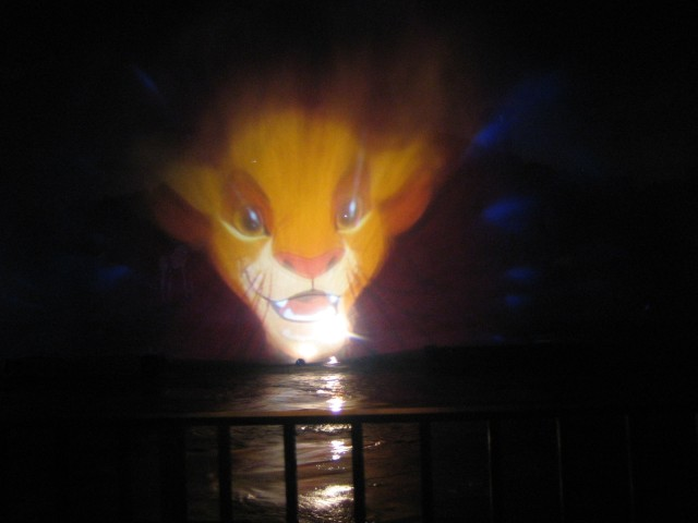 Fantasmic (the movie is projected on a water fountain)