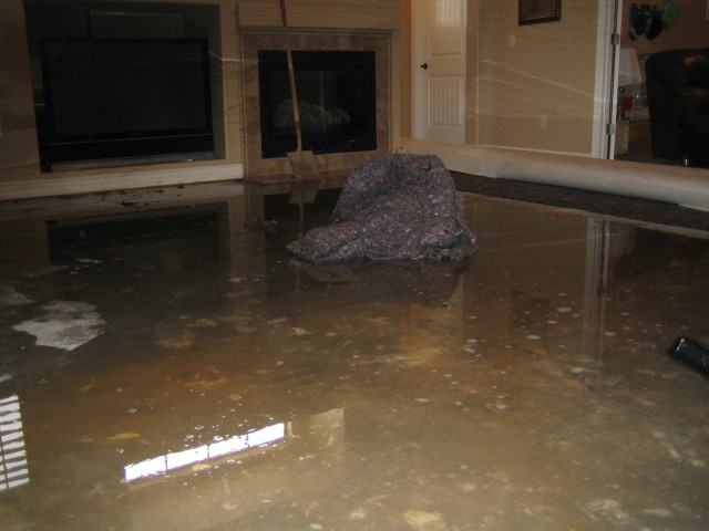 The family room, after pulling the carpet out.