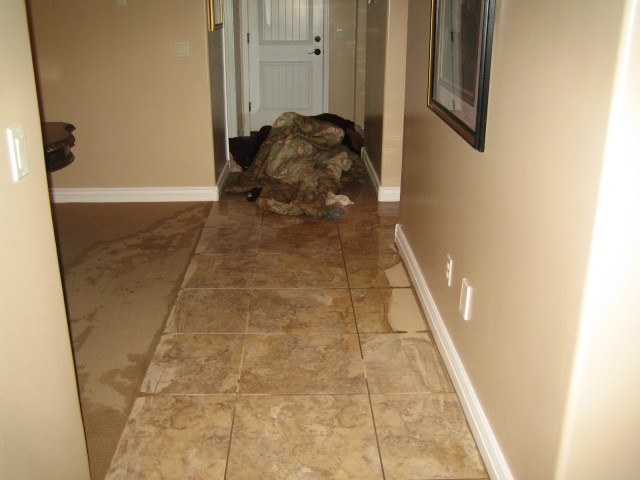 Hallway and garage door. This is where the water all entered the house.