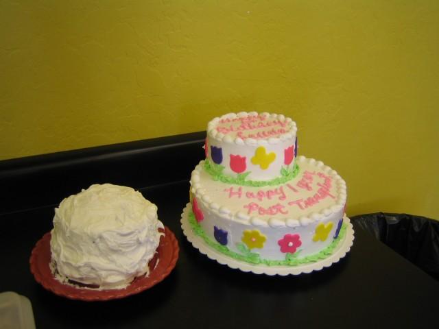 Lauren's birthday cakes