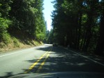 Heading down the 101 into the redwoods