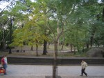 NYC - Central Park (3)