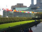 NYC - UN Flags
