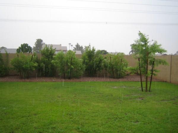 Rainin'