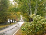 New Hampshire country lane