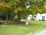 Back yard cemetery