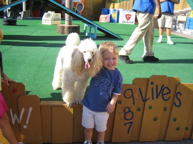Nathan with a poodle after the pet show